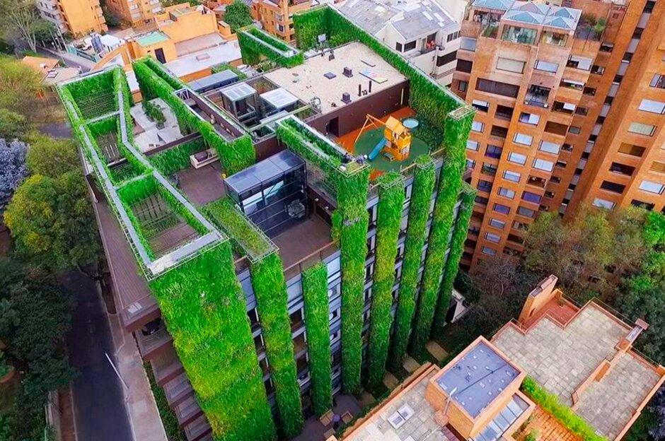 El Auge de la Jardinería Vertical en América Latina