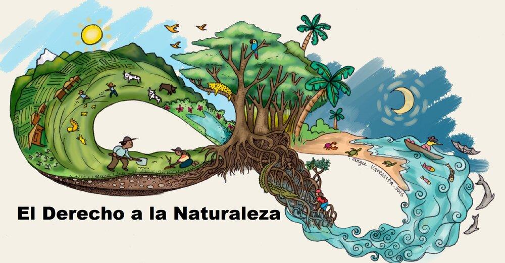 Un Ambiente Saludable Como Derecho Humano