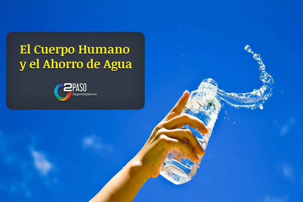 El Cuerpo Humano y El Ahorro de Agua