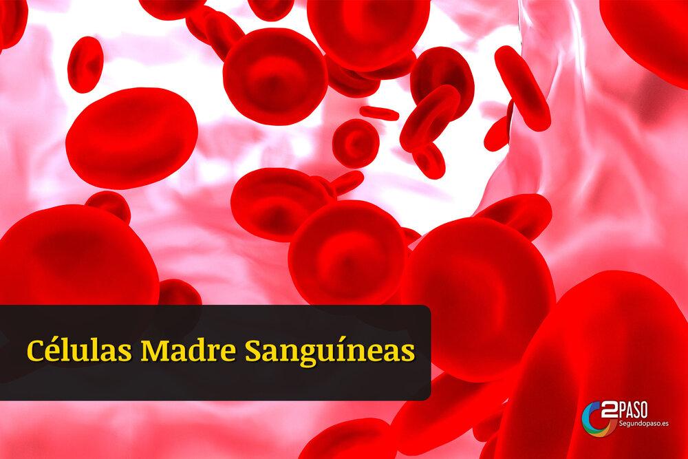 Células Madre Sanguíneas